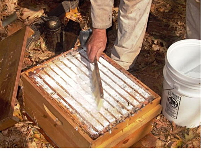 treating a hive with powdered sugar