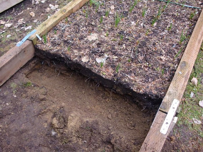 Tips On Double Digging Your Raised Beds