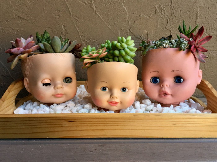 plastic doll heads used as cacti containers