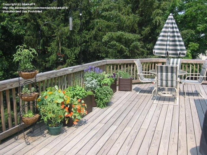 wooden deck with containers