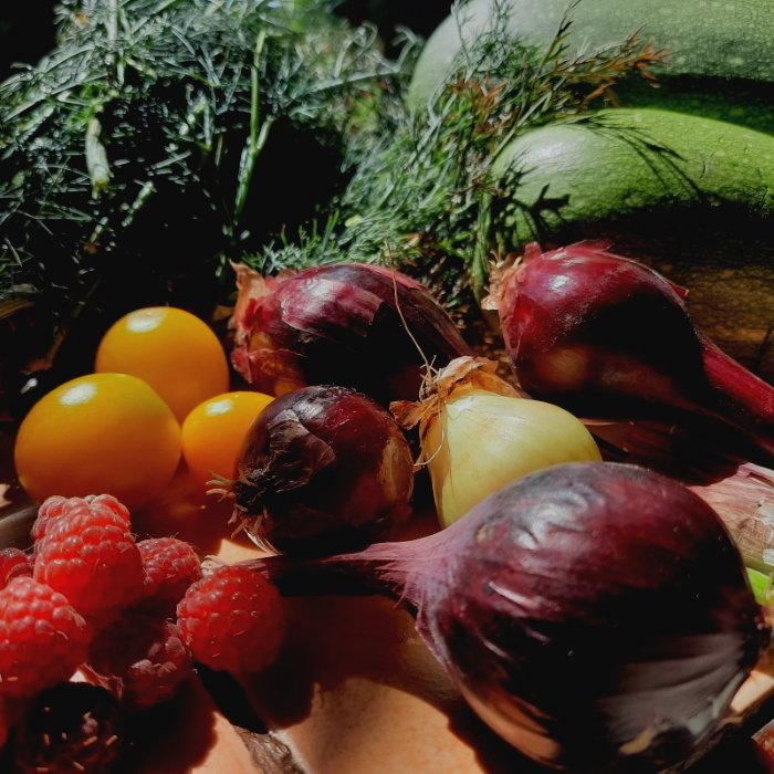 Red onions, yellow cherry tomatoes, raspberies, squash and dill