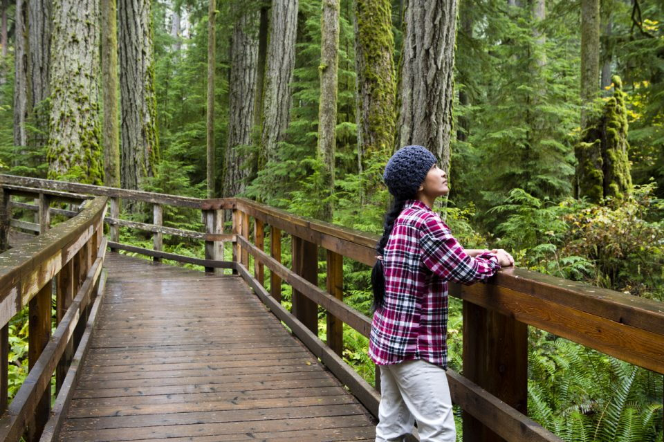 person on a wooden walkway in a forest