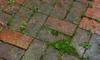 Brick Repair: How to Replace Spalling Bricks
