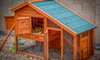wooden chicken coop with a blue roof