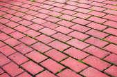 Brick pavers.