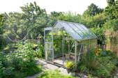 A greenhouse.