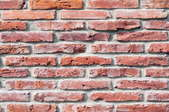 A red brick wall with efflorescence.