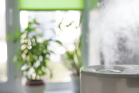 A humidifier with plants in the background.