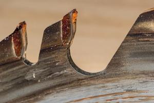 saw blade with sap buildup