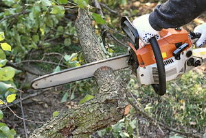 A man uses a chainsaw.