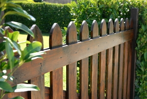 wood fence with hedges