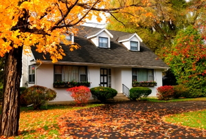 A single-family house among trees and autumn fallen leaves.