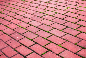 Brick pavers.