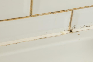 Dirty shower grout lines.