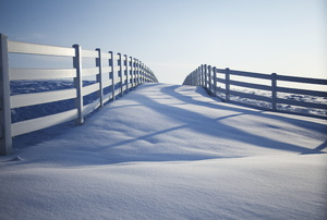 a bridge covered in snow
