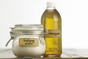 A bottle of vinegar and a jar of baking soda.