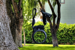 Horse tire swing. Photo by Tom Check https://www.flickr.com/photos/tombothetominator/