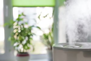 humidifier next to a plant in front of a window