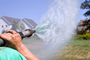 An arm holding a hydrosreed  hose as it sprays materials onto a yard. Two houses and part of a tree in the extreme background.