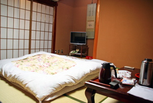 Room with futon bed