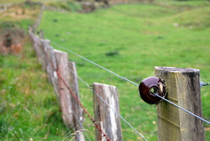 An electric fence run around the outside of a pasture.