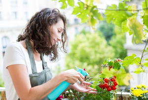 Organic Vegetable Gardening With Pesticides