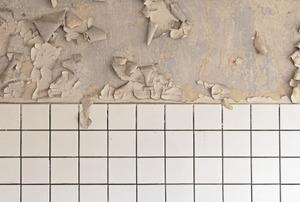 Paint peeling off a bathroom wall.