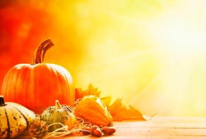A Thanksgiving motif featuring pumpkins and gourds.