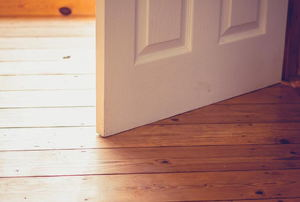 white interior door opening over a wood floor