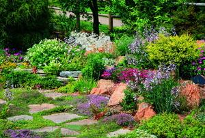 A landscape featuring edible plants.