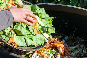 woman composting food waste
