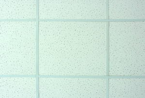 A background of suspended ceiling tiles.