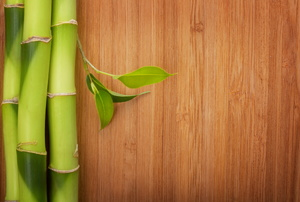 Green bamboo stalks next to bamboo wood flooring