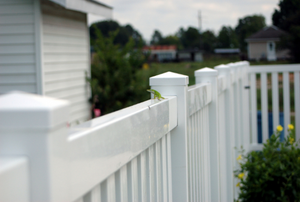 a row of white vinyl fencing