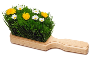 A hand broom with grass and daisies.