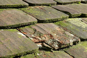Mossy roofing tiles in need of cleaning and repair.