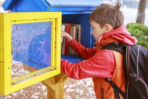 a child reaching into a little book library