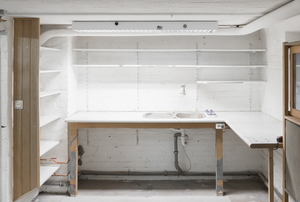 garage with shelves and cabinets