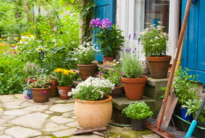 Entryway surrounded by potted plants