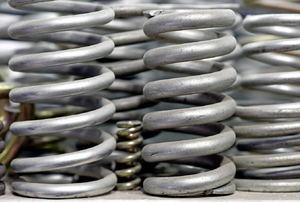 several silver springs