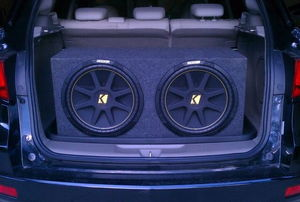 Subwoofers in the trunk of a car