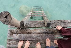 A dock ladder.