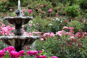 Tiered fountain in a flower garden
