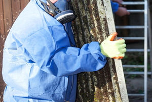 A professional wearing a respirator and safety suit while removing asbestos.