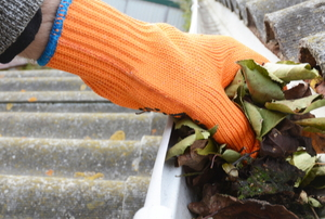 gloved hand cleaning leaves from gutter