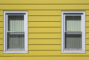 House with yellow aluminum siding and two windows