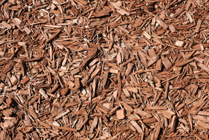 Mulch in a garden.