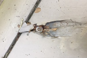 a screw embedded in a deck