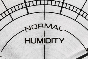 10 Ways Fluctuating Humidity Levels Can Damage Your Home and Belongings