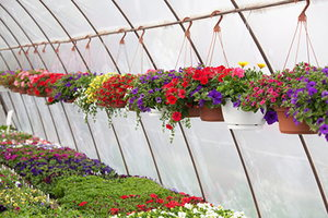4 Greenhouse Watering Systems
